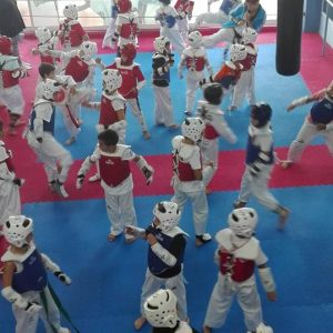tae-kwon-do-athlitikos-gymnastikos-syllogos-al-4