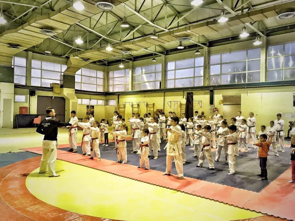 athlitikos-sylllogos-karate-avantis